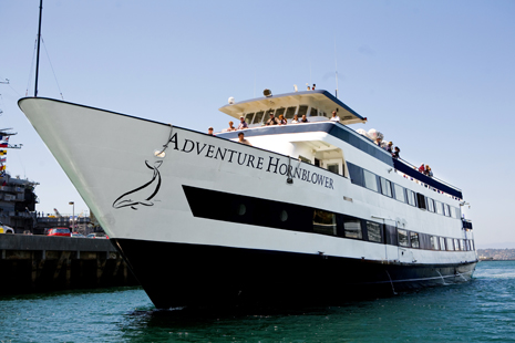 Adventure Hornblower port bow